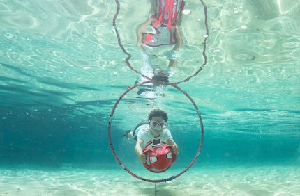 Yamaha seal in action