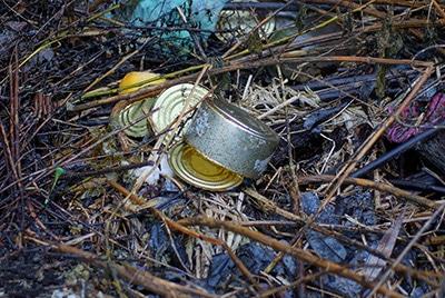 Campsite trash